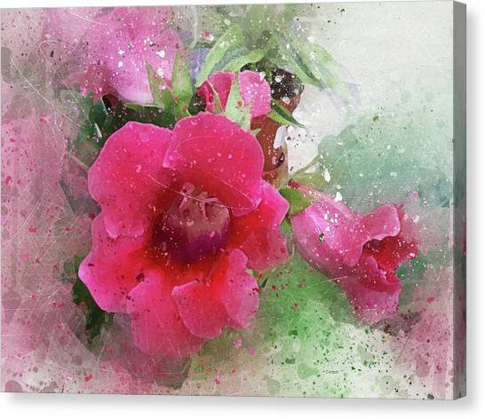 Gloxinia-4 Canvas Print