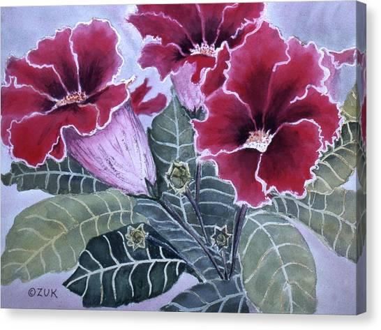 Gloxinias Canvas Print