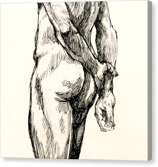 Male Nudes Canvas Print - Gluteus Maximus by Roz McQuillan