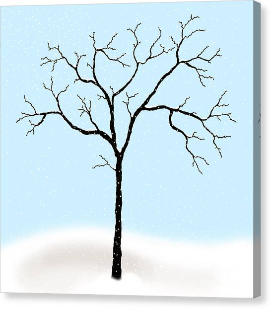 Gnarled In Winter Canvas Print