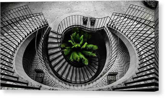 Spiral Canvas Print - Go Green by Raveesh Ahuja