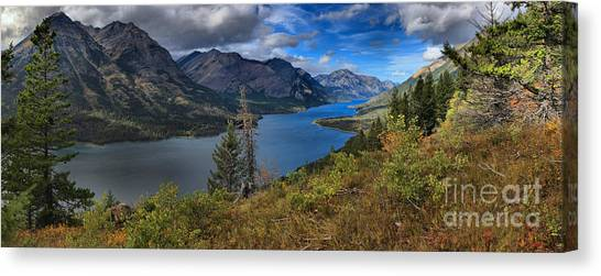 Canada Glacier Canvas Print - Goat Haunt Pine Tree Panorama by Adam Jewell