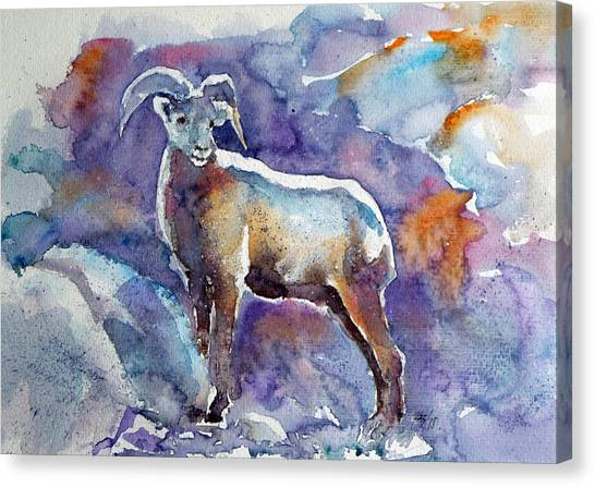 Goats Canvas Print - Goat by Kovacs Anna Brigitta
