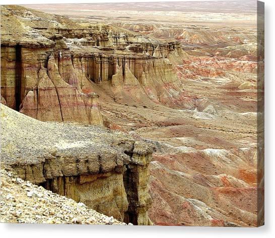 Gobi Desert White Cliffs Canvas Print
