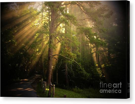God's Light 2 Canvas Print
