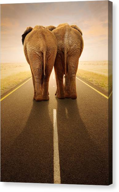 Roads Canvas Print - Going Away Together / Travelling By Road by Johan Swanepoel