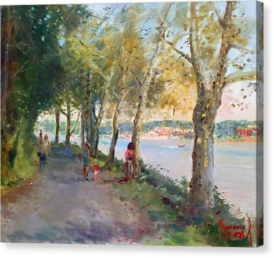 Dog Walking Canvas Print - Going For A Stroll by Ylli Haruni