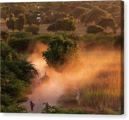 Canvas Print featuring the photograph Going Home At Sunset by Pradeep Raja Prints