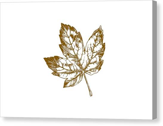Rustic Canvas Print - Gold Leaf by Chastity Hoff