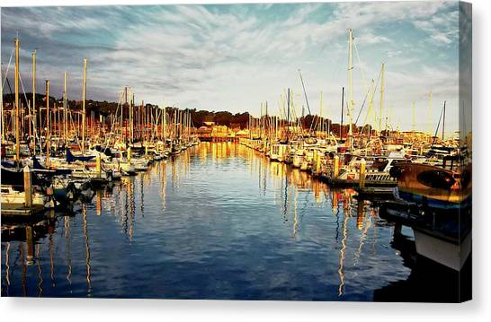 Gold Light, Monterey Marina Canvas Print