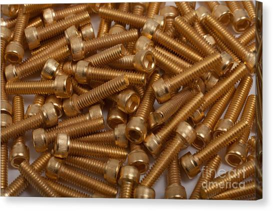 Gold Plated Screws Canvas Print