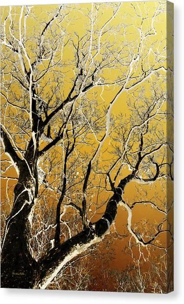 Canopy Canvas Print - Gold Tree Art by Christina Rollo