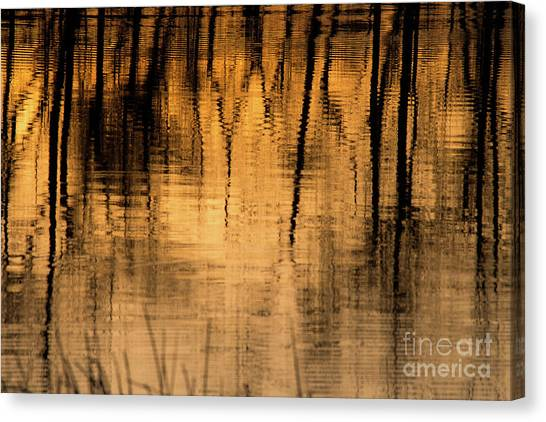 Golden Abstract Canvas Print