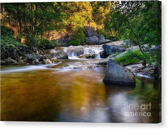 Golden Calm Canvas Print