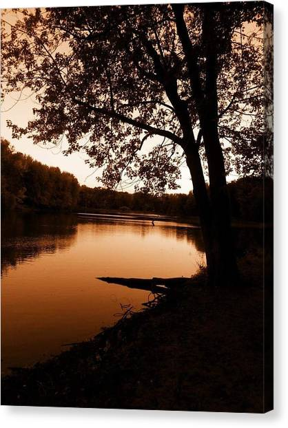 Iowa Canvas Print - Golden Evening by Michelle Willoughby