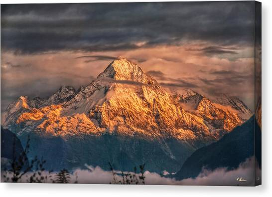 Golden Evening Sun Canvas Print