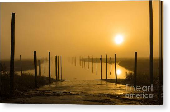 Golden Fog On The Nissequogue Canvas Print