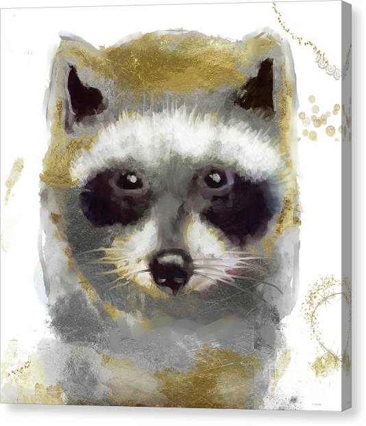 Raccoons Canvas Print - Golden Forest Raccoon  by Mindy Sommers