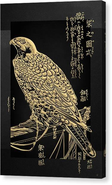 Golden Japanese Peregrine Falcon On Black Canvas  Canvas Print