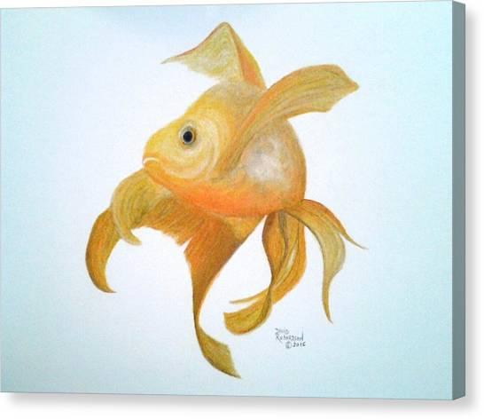 Koi Pond Canvas Print - Golden Koi by David Richardson