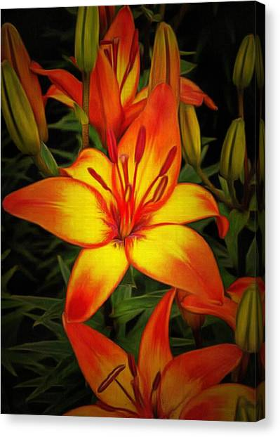 Golden Lilies Canvas Print