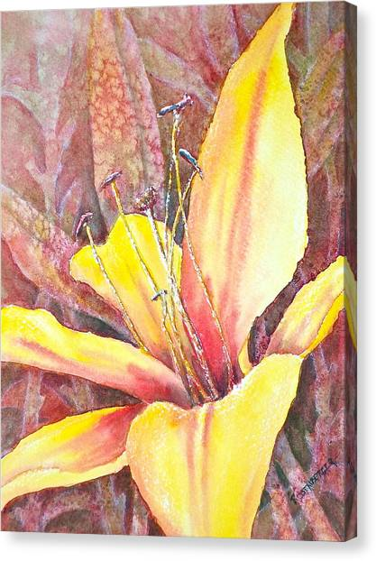 Golden Lily Canvas Print