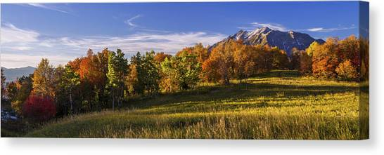 Mountainscape Canvas Print - Golden Meadow by Chad Dutson