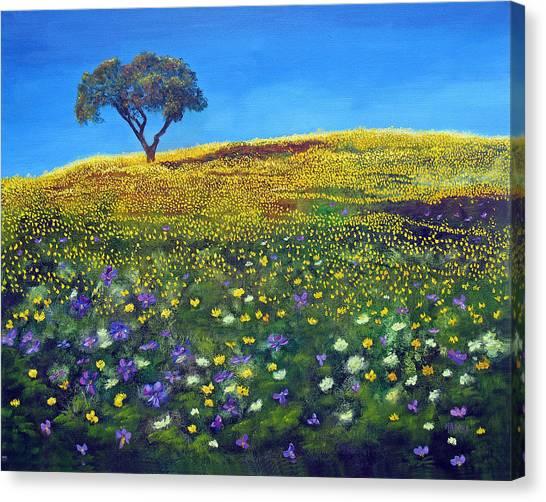 Golden Meadow  Canvas Print