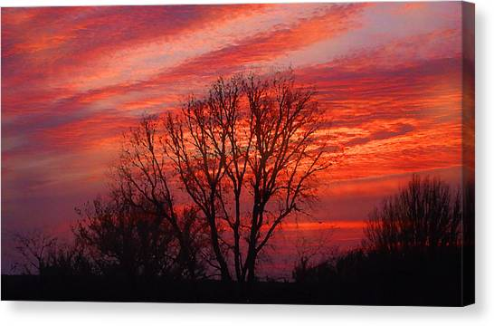 Canvas Print featuring the digital art Golden Pink Sunset With Trees by Shelli Fitzpatrick