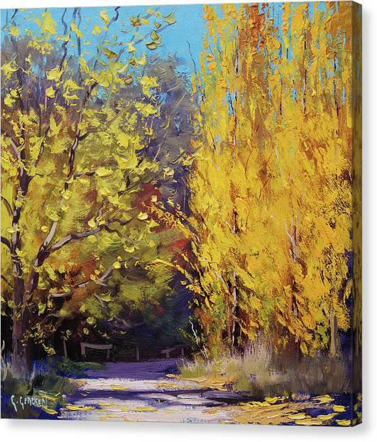 Amber Canvas Print -  Golden Poplars by Graham Gercken