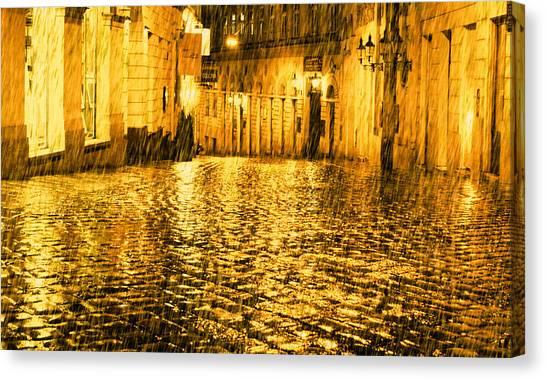 Golden Rain In Vienna At Night Canvas Print
