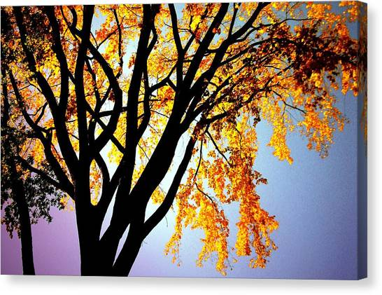 Golden Sillhouette Canvas Print by Yannick Guerin