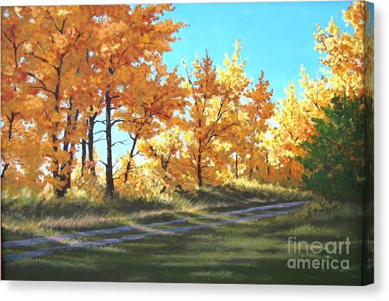 Golden Splendor Canvas Print