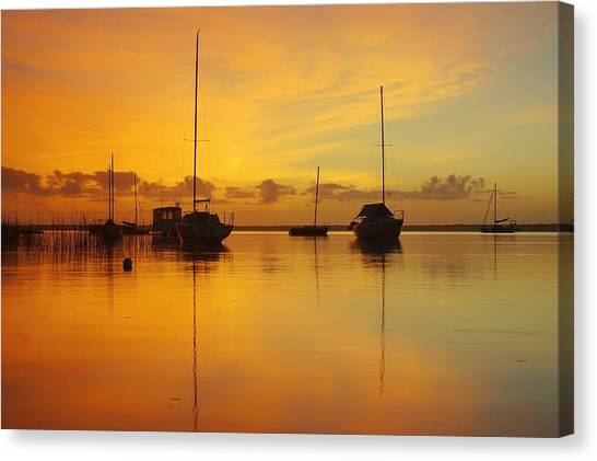 Golden Sunrise At Boreen Point Canvas Print