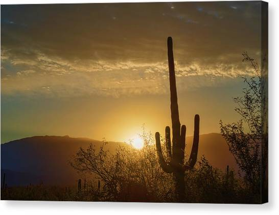 Canvas Print featuring the photograph Golden Sunrise by Dan McManus