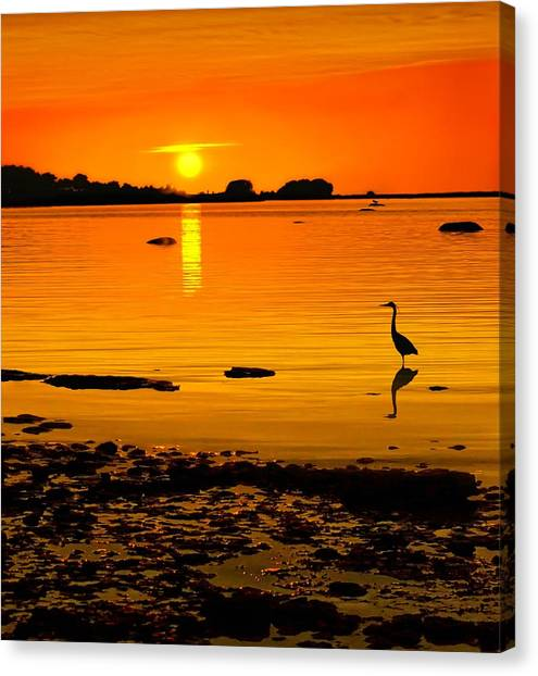 Golden Sunset At The Bay Canvas Print