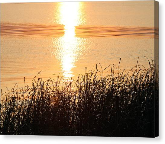 Canvas Print - Golden Sunset by Evelyn Patrick
