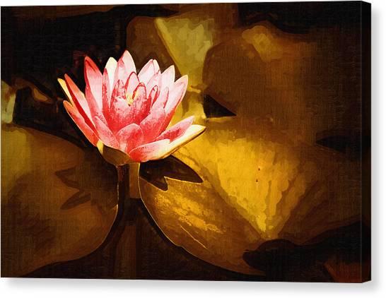 Golden Swamp Flower Canvas Print by Paul Bartoszek