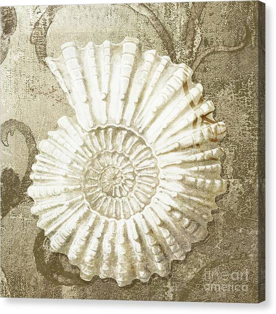 Clams Canvas Print - Golden Tides II by Mindy Sommers