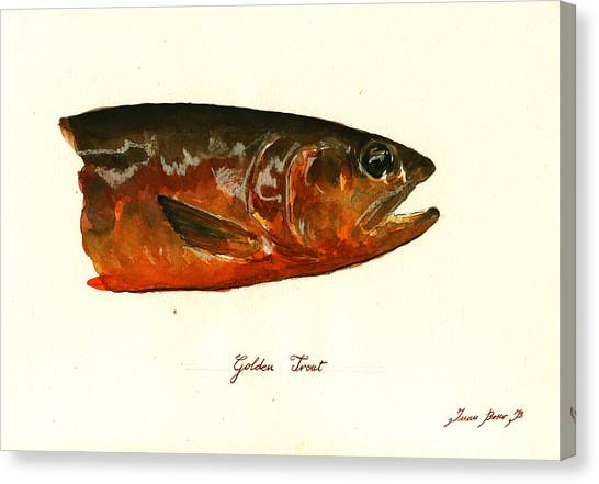 Fly Fishing Canvas Print - Golden Trout  by Juan  Bosco