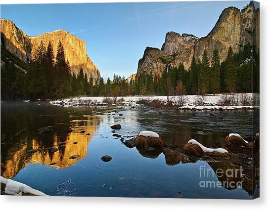 Foggy Forests Canvas Print - Golden View - Yosemite National Park. by Jamie Pham