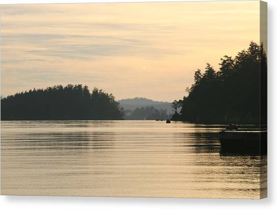 Golden Waters Canvas Print by Doug Johnson