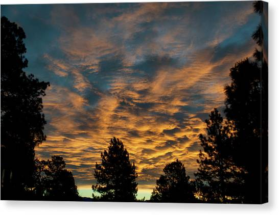 Canvas Print featuring the photograph Golden Winter Morning by Jason Coward