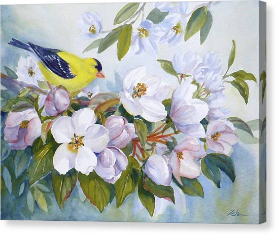 Goldfinch And Crabapple Blossoms Canvas Print