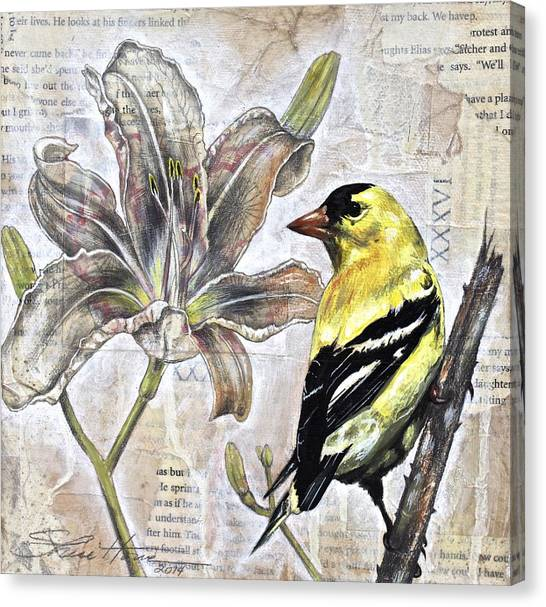 Goldfinch And Lily Canvas Print