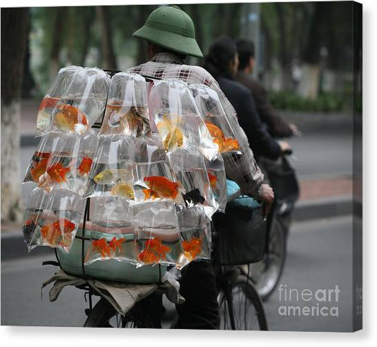 Goldfish In A Bag Vietnam On Bicycle Unique  Canvas Print