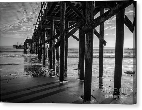 Ucsb Canvas Print - Goleta Beach Pier Black And White by Mitch Shindelbower