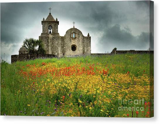 Mission Canvas Print - Goliad In Spring by Jon Holiday