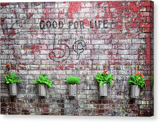 Dr. Pepper Canvas Print - Good For Life by Steven Michael