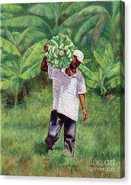 Good Harvest Canvas Print